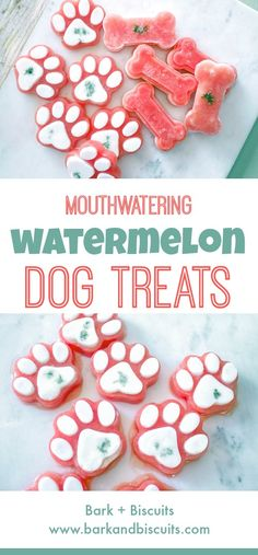 Mouthwatering Watermelon Dog Treats. These Frozen Treats Are Perfect For Summer!