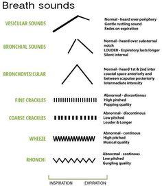 Breath sounds #nursing