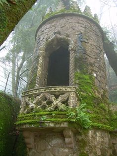 Mossy tower window - the perfect place to let down your hair!