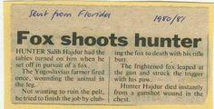 "Fox Shoots Hunter - ""Hunter Hajdur died instantly from a gunshot wound in the chest"" (Yugoslavia 1980-1981)"