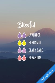blissful eo blend : lavender, bergamot, clary sage, geranium