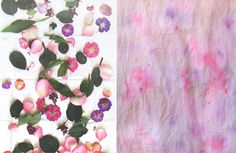 Post image for Eco Dyeing With Flowers: Part 2, The Results!