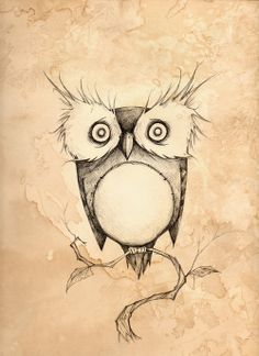 Possibly the cutest owl drawing. Ever.