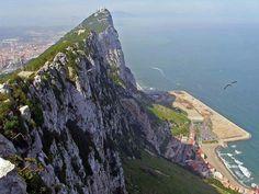 Gibraltar i mars (C) Avifauna