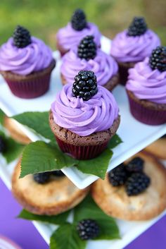 Blackberry Cupcakes + Mini Pies------no recipes but gorgeous pictures that inspire me to find a way. Blackberry Cupcakes, Yummy Cupcakes, Purple Cupcakes, Fruit Cupcakes, Coconut Cupcakes, Cheesecake Cupcakes, Lemon Cupcakes, Vanilla Cupcakes, Chocolate Cupcakes