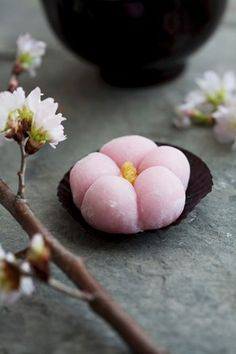 Mochi (Japenese rice cake) with cherry blossoms