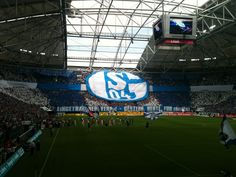 Schalke 04 - eingetragener Verein