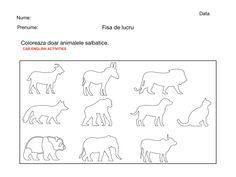 Coloreaza doar animalele salbatice sau domestice. Line Chart, Blog, Blogging