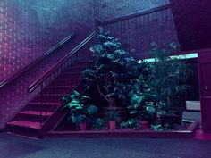 Vaporwave room: neon aesthetic, dark tropic, violet, blue, p Purple Aesthetic, Aesthetic Dark, Chiaroscuro, Soft Grunge, Neon Lighting, Vaporwave, Oeuvre D'art, Les Oeuvres, Light In The Dark