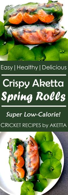 Who knew eating bugs for protein can be so easy and delicious! Crispy Aketta Spring Rolls provide a simple, healthy snack packed with cricket protein. Protein Recipes, Protein Foods, Cricket Flour, Crickets, Tasty, Yummy Food, Spring Rolls, Superfoods, Salmon Burgers