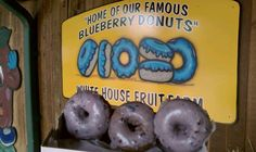 Defend Youngstown: 50 Things To Do In Youngstown.  Whitehouse Fruit Farm blueberry donuts.
