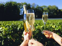 Trip to Champagne, France?