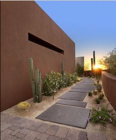 large concrete pavers, crushed gravel, cacti, and drought-tolerant plants