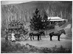 Cobb and Co. coach and horses outside Harcourt,Warburton in Victoria (year unknown). Melbourne Victoria, Victoria Australia, Old Pictures, Old Photos, Random Pictures, Colonial Cottage, Australian Continent, Largest Countries, Historical Pictures
