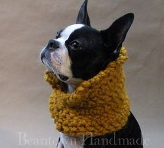 handmade sweaters and things for BTs and other dogs.