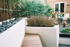 Palm fronds, grasses & black bamboo in rendered planters
