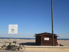 Bibliomar.Bibliomar es el servicio de bibliotecas que desde el Ayuntamiento de Valencia ofrecen a todos sus usuarios. La idea es que sea un punto de encuentro de lectura, cultura y actividades. Las bibliotecas están situadas en la playa de la Malvarrosa, en la playa de Pinedo y en la playa del Cabañal. Además. Son bibliotecas adaptadas a discapacitados visuales y personas con autismo.