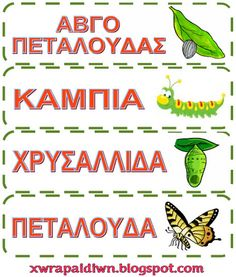 Ταξίδι στη Χώρα...των Παιδιών!: Μια πεταλούδα...γεννιέται! - Εποπτικό υλικό, φύλλα εργασίας και προτάσεις κατασκευών Butterfly Crafts, Spring Crafts, Pre School, Activities, Education, Learning, Bugs, Insects, Science