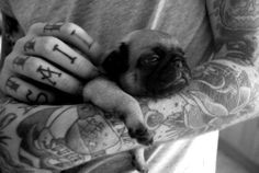 tattoos, black & white, black and white, cute, tattoo, pug, dog, mops, love