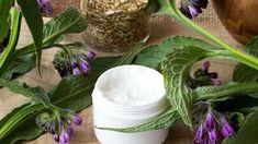Hledáte přírodní lék na bolavé klouby? Nejlepší je domácí kostivalová mast, fakt | Prima Nápady Korn, Herbalism, Detox, Cabbage, Vegetables, Tips, Plants, Fitness, Syrup
