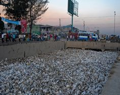 Haiti's ban on plastic angers country's poorest | Environment | MiNDFOOD
