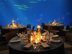 Wedding at The Monterey Bay Aquarium... I want!