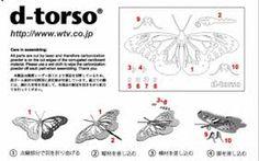"""Résultat de recherche d'images pour """"d-torso"""""""
