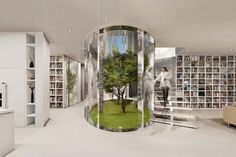 Living Trees Grow Inside Mansions Oval Atrium