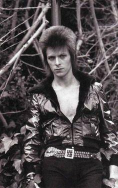 Photo of Ziggy for fans of Ziggy Stardust.