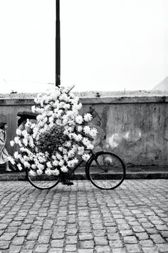 flowers are delivered on bike across the globe