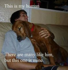 DOGS ARE VERY POSSESSIVE, BUT WE LOVE IT !!!!