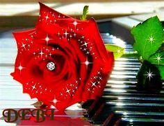 Rose Debi