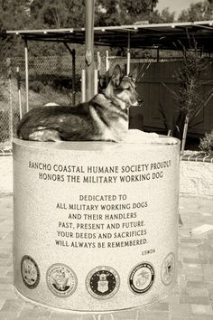 """The average Military Working Dog saves 150 lives during its time in service,"" www.dogheirs.com/..."
