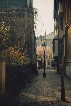 alleyways and lampposts. get me every time.
