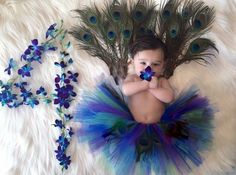 Baby month - List of the most beautiful baby products Foto Newborn, Newborn Baby Photos, Baby Poses, Monthly Baby Photos, Monthly Pictures, Peacock Baby, Peacock Theme, Baby Shooting, Baby Girl Pictures