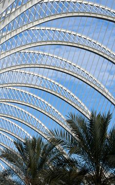 L'Umbracle Ceiling, Valencia  Spain