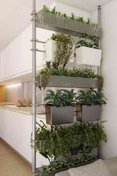 10 Amazing Benefits of Eco-Friendly Living Wall Partitionsi Door Dividers, Space Dividers, Stolmen Ikea, Indoor Garden, Indoor Plants, Kitchen Design Open, Half Walls, Green Kitchen, Kitchen Herbs