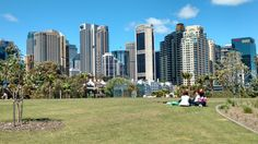 A nice view of #sydney city