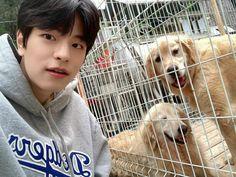 Stray Kids Seungmin, Cloud 9, Lee Know, K Pop, South Korean Boy Band, Korean Boy Bands, Boy Groups, Puppies, Animals