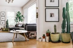 Allens Not So Serious Small Cool | Apartment Therapy | love the framed photos and the coffee table