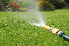 Watering a lawn too much means you're wasting money and valuable natural resources. Not enough water and your lawn can turn dry and brown. Click this article for lawn watering guidelines and helpful watering lawn care tips.