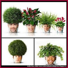DIY Photo Chia Pets ~ Great Mother's Day Gift
