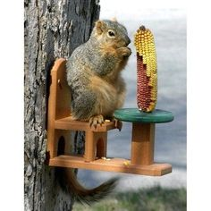 Cardinals Squirrels Wrens Recycled wood handcrafted garden decor The Squirrel Table Squirrel Picnic Table Wildlife Feeder Chipmunks