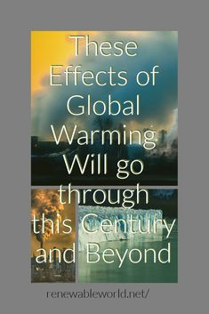 I have researched and came up with some effects of global warming that will happen in the future or will continue. Global Warming Project, Pollution Prevention, Effects Of Global Warming, All About Water, Science Fair Projects, Environmental Science, Renewable Energy, Climate Change, Helping People