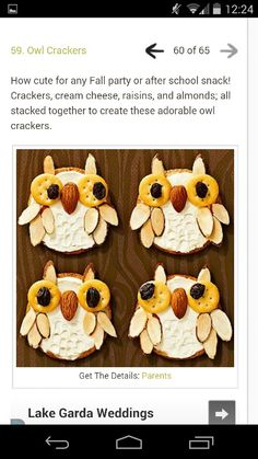 Owl crackers!