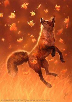 oh! happy fox! <3