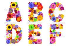 alfabeto floral aislado en blanco - las letras a, b, c, d, e, f ...