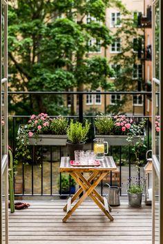 balkon ideen Beautiful balcony - Veri Coll From Neufforge - Kleiner Balkon - Beautiful balcony - Veri Coll Fro Small Balcony Garden, Small Balcony Decor, Balcony Plants, Balcony Flowers, Apartment Balcony Decorating, Apartment Balconies, Interior Decorating, Decorating Ideas, Parasols