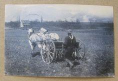 Farmer with horse drawn cultivator in field~farm house~Dubuque Iowa~1908 photo~r