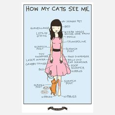 How My Cats See Me Poster  by Yasmine Surovec